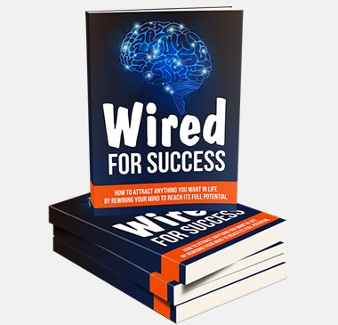 Wired For Success Done-For-You PLR Package By Aurelius Tjin