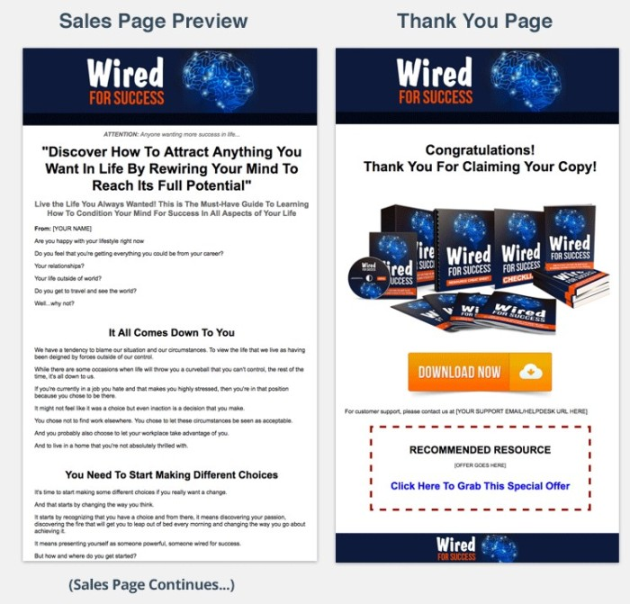 Wired For Success PLR Package By Aurelius Tjin