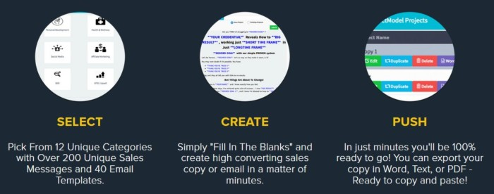 Exact Model The Fill In The Blank Copy Writing Software By Anik Singal