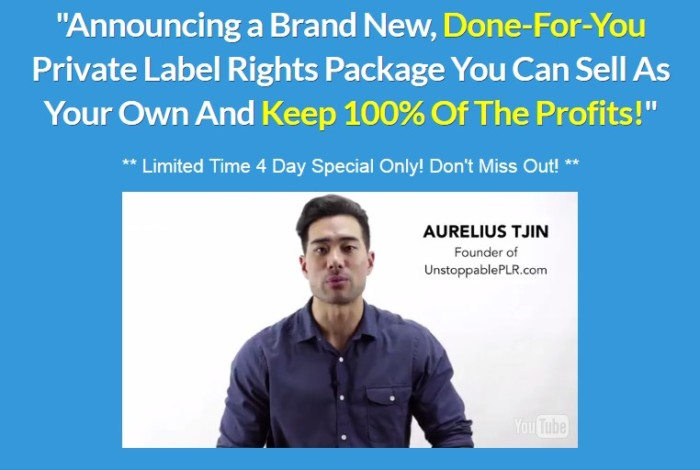 Webinar Authority Done For You PLR Package by Aurelius Tjin