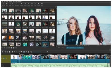 VideoBold Macro Story Film Collection by Justin Sardi
