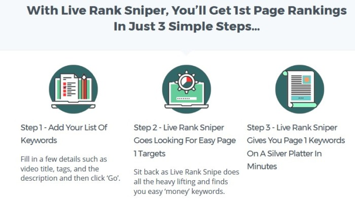 Live Rank Sniper Pro Agency Software by Peter Drew
