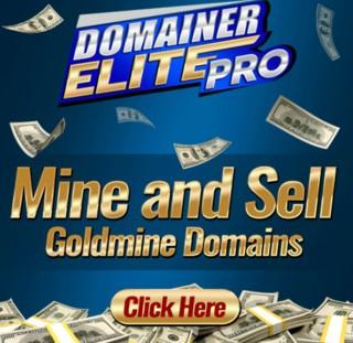 Domainer Elite Pro by Jamie Lewis