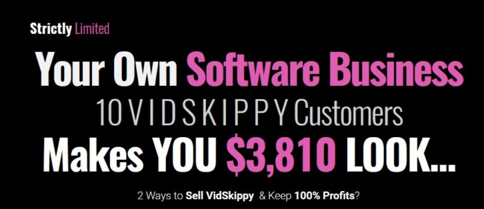 Vidskippy Agency License by Mark Bishop