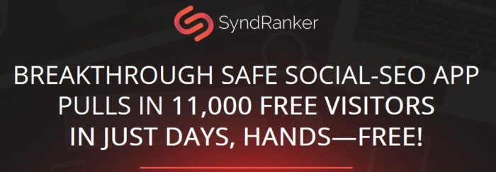 Syndranker Website Ranking Software by Neil Napier