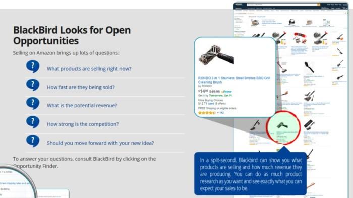 Image result for Blackbird Amazon Software