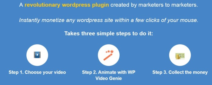 WP Video Genie Plugin Software by Radu Hahaianu